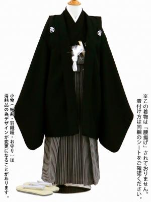 黒紋付・黒の縞袴(七五三)