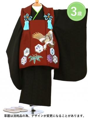 鷹と六角紋のエンジの被布コート・黒の着物セット(七五三)