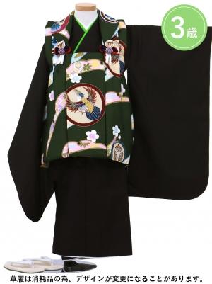 鷹紋のグリーンの被布コート・黒の着物セット(七五三)