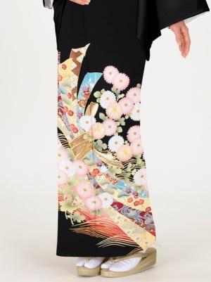 菊に束ね熨斗の留袖